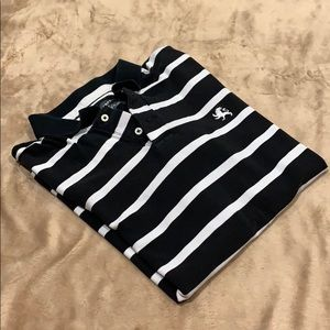 Express Striped Polo T Shirt
